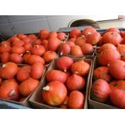 Оранж Саммер (500 с)